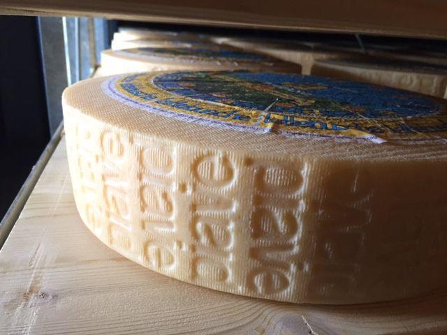 #piavedop #formaggiopiave #lattebusche #busche #veneto #belluno #barbianco #cheese #italiancheese