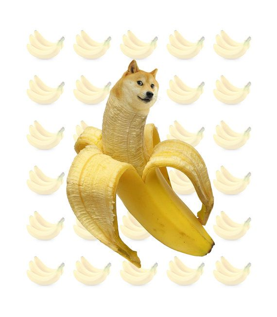 Original Banana Doge Shibe Meme Print 14 X 16 By AllieSurdovel 2200