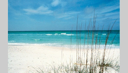 17 Best Images About Beach It On Pinterest Sarasota Florida Sharks And Islands