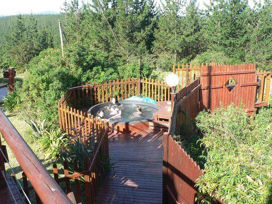 Teniqua Treetops (Sedgefield, Südafrika) - Hotel-bewertungen – TripAdvisor