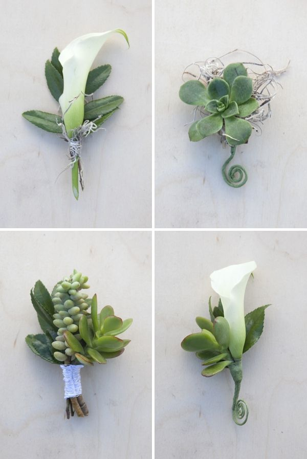 White blooms and green succulents make a masculine boutonnieres