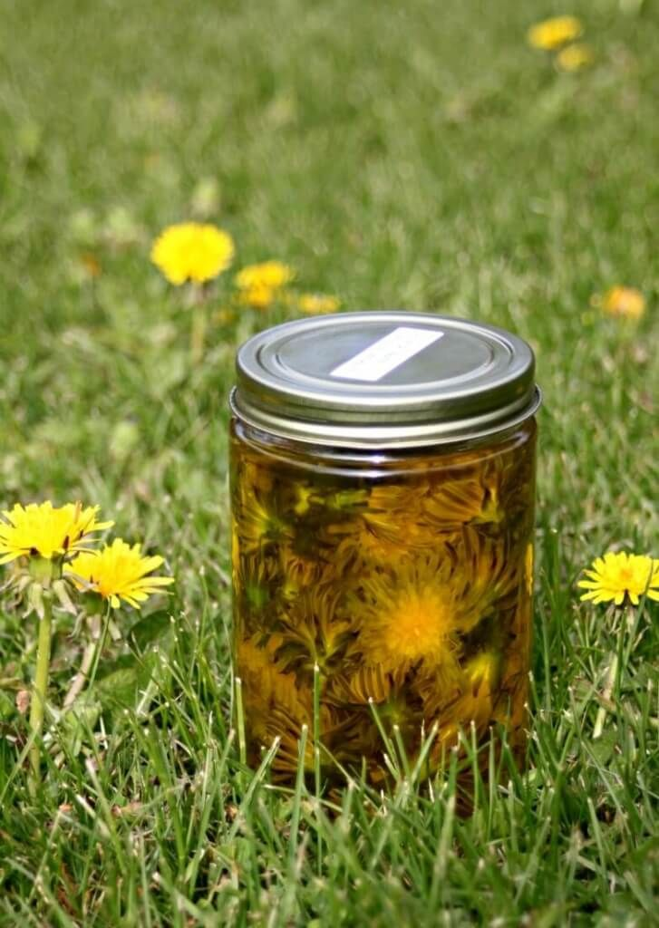 Learn how to use dandelions for the home, body, AND in food!- Scratch Mommy