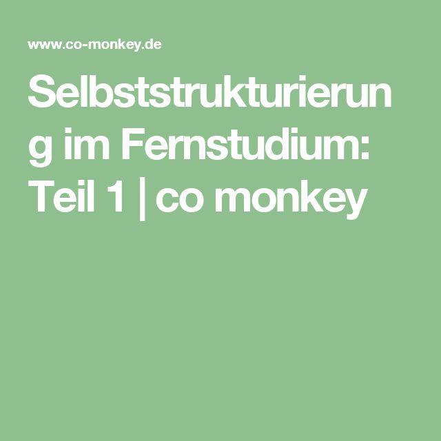 Selbststrukturierung im Fernstudium: Teil 1 | co monkey