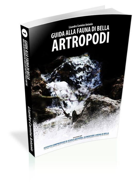 """Anteprima 3d - Ideazione, Progettazione e Sviluppo della grafica di copertina del Libro """"Guida alla fauna di Bella - 1a Parte (Bella - Istituto comprensivo Mario Pagano - Natura)""""."""