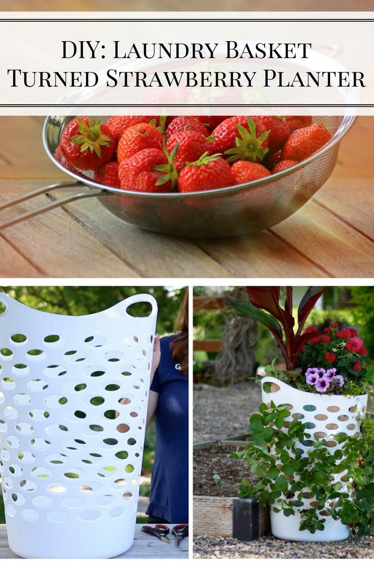 Best 25 Strawberry Planters Ideas On Pinterest Strawberry Planters Diy Wooden Crate Raised