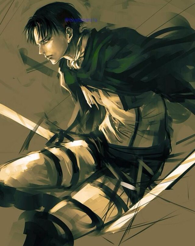 17 best images about levi rivaille on pinterest levi