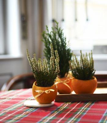 4 gyönyörű, illatos dekoráció narancs vagy mandarin héjáb / oragnge decoration /Éva Magazin