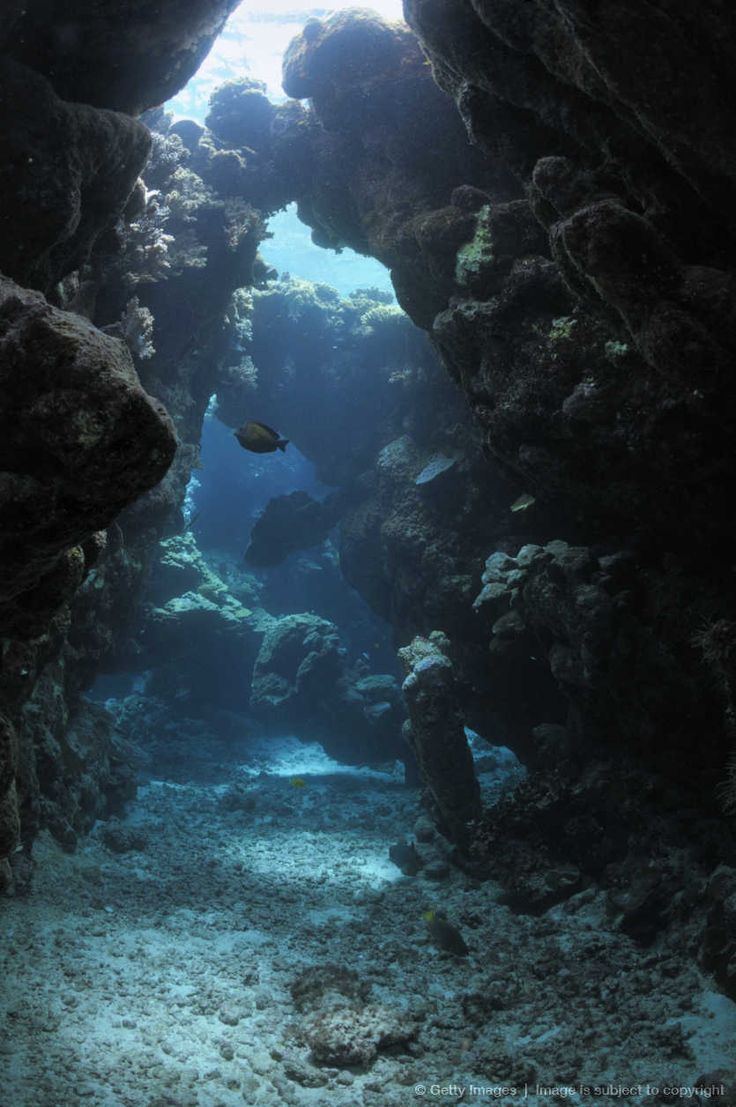 Image detail for -Sunbeams tthrough holes in underwater caves Red Sea, Egypt