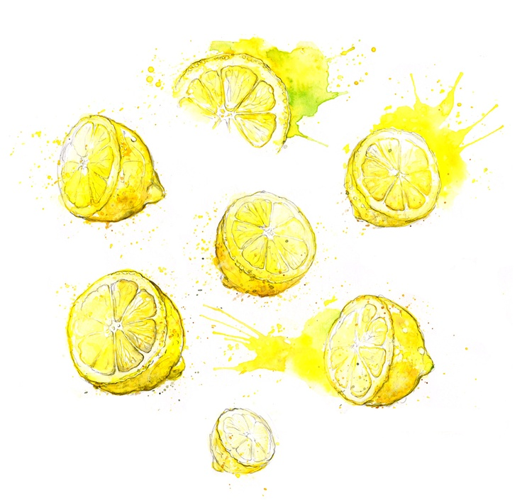 Amy Holliday Illustration: More Fruits: Lemons and Blackberries