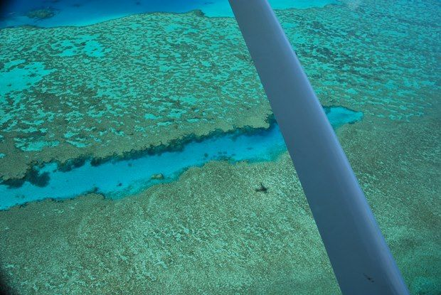 Great Barrier Reef Scenic Flights Video | The Travel Tart Blog
