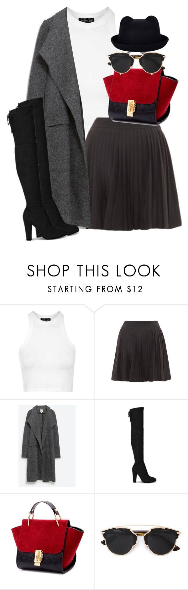 """Untitled #1776"" by itsmeischoice on Polyvore featuring Topshop, Zara, Christian Dior, women's clothing, women, female, woman, misses and juniors"