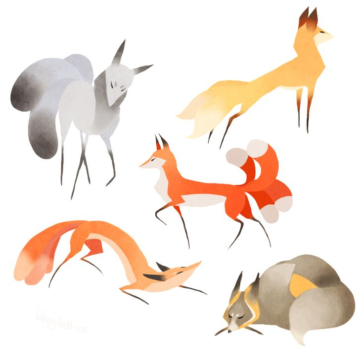 All of These Foxes! : Photo
