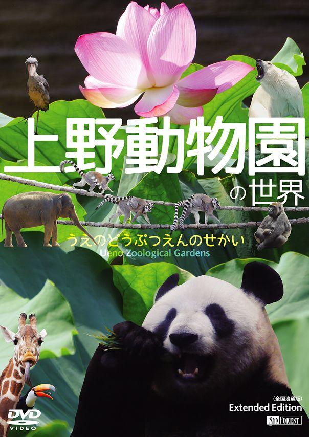 DVD『上野動物園の世界』Cover Jacket - Graphic Design & Photography (by Yuji Kudo) © 2014 Synforest Inc.