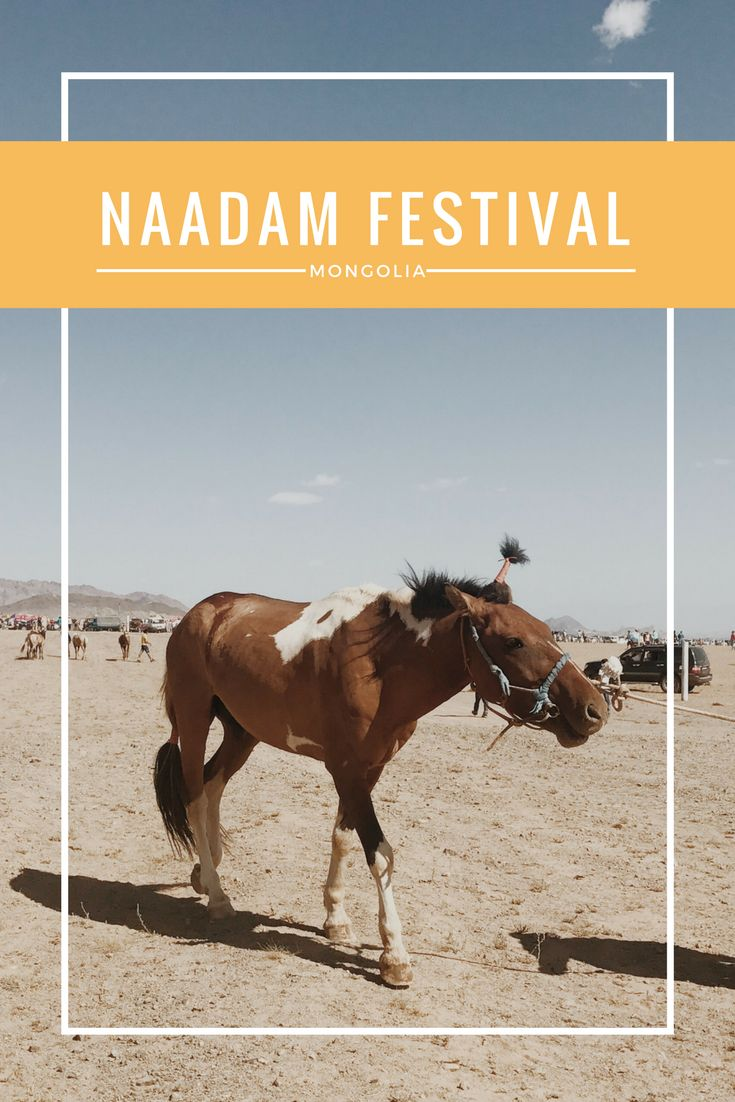 Naadam is what I like to call the Mongolian Olympics. It's a festival/competition of three events: horse racing, archery, and wrestling. Naadam is quite interesting because there's the …