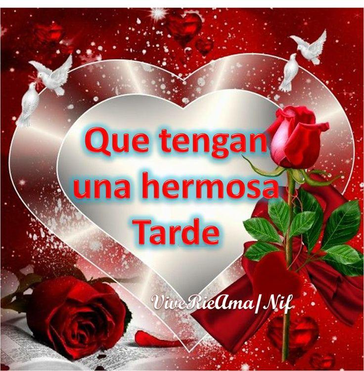 Hermosa Tarde Http Www Facebook Com Viverieama Nif