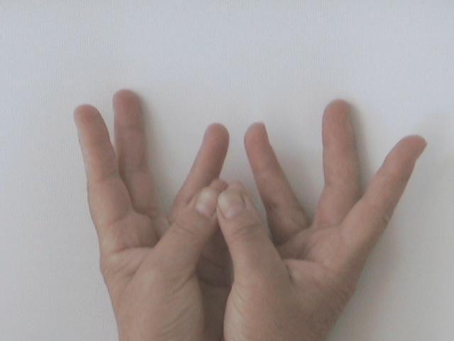 A bal kisujj és a bal hüvelyk összeér, míg a jobb hüvelyk- és kisujj hegye is érinti egymást. A kisujjak egymáshoz simulnak, tenyerek felfelé néznek. A gyomor előtt tartsa 7 percig! Az emésztőrendszer, máj, gyomor, epehólyag, lép, vékonybelek, hasnyálmirigy, bőr, szemek, vér, verejtékmirigyek problémáinál segít, fokozza az emésztőnedvek és az enzimek termelődését, harmonizálja az anyagcsere folyamatokat, optimálisan állítja be a testhőmérsékletet. Mantra: shshshrííímmm.