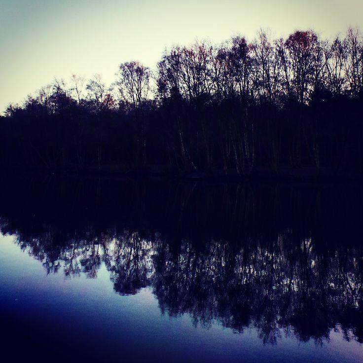 A dark reflection of a tree line at Tilgate Lake.. #dark #reflection #lake #landscape #treeline #woodland #bluesky #nature #tilgatepark #crawley #sussex