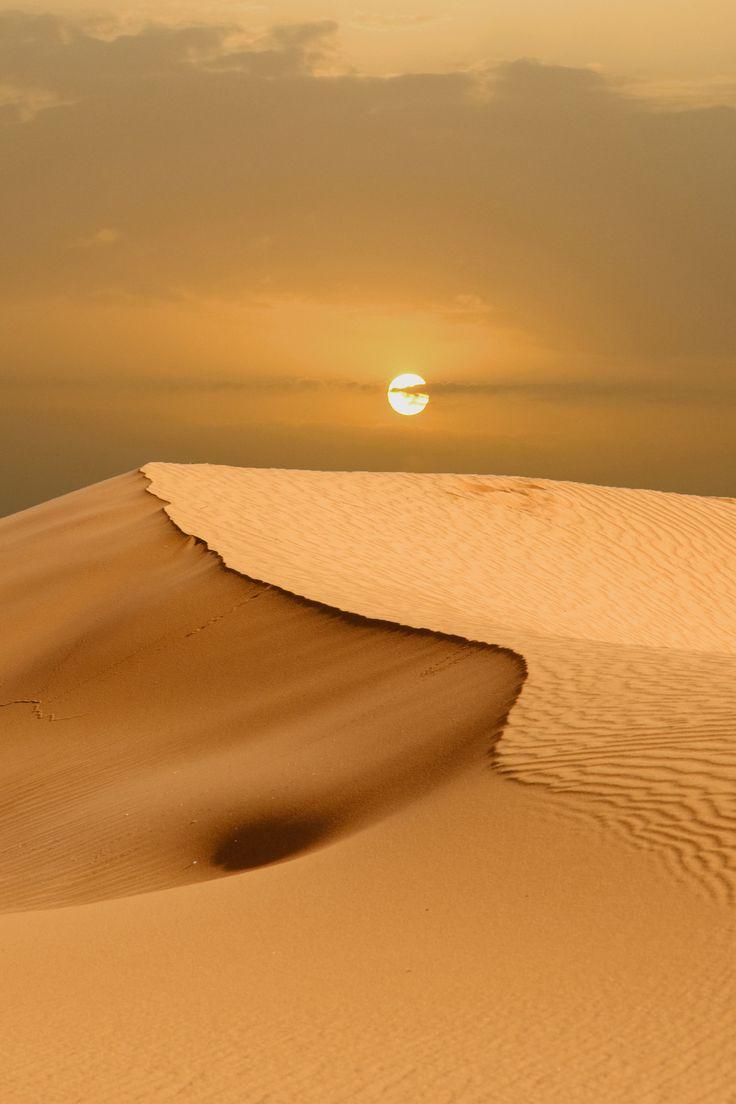 Golden desert #desert #gold #nature