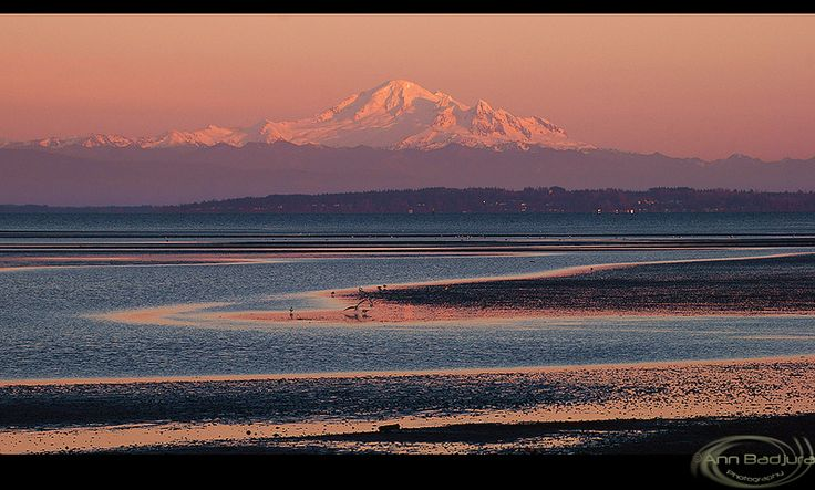 Last light at Boundary Bay, British Columbia, Canada...taken by myself, ©Ann Badjura