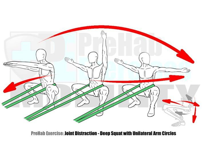 Joint Distraction for the Hips #PreHabExercises Improve the depth of your squat and the Range of Motion in lunges and Step-Ups with this Joint Distraction exercise. Hip Mobility is integral to good alignment and Movement Efficiency therefore it's recommended to take the time to improve the Range of Motion in your hips! #PreHab #PrepareToPerform Here's how: HIPS: DEEP SQUAT HIP FLEXION Benefits: This Joint Distraction exercise aligns the arthrokinematics and creates more space in the Hip…