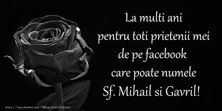 La multi ani pentru toti prietenii mei de pe facebook care poate numele Sf. Mihail si Gavril!