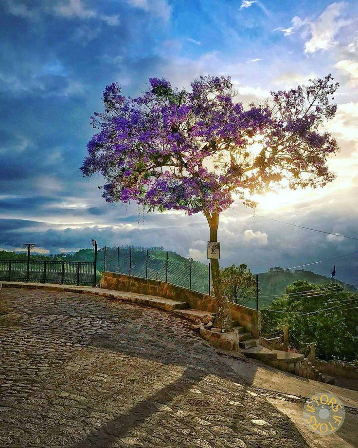 Santa Lucía  Foto por @iftors #santalucia #tegucigalpa #honduras #honduraspost #catracha #catracho #latam #travel #explorer #instago #adventure #mochileros #hiking #nature