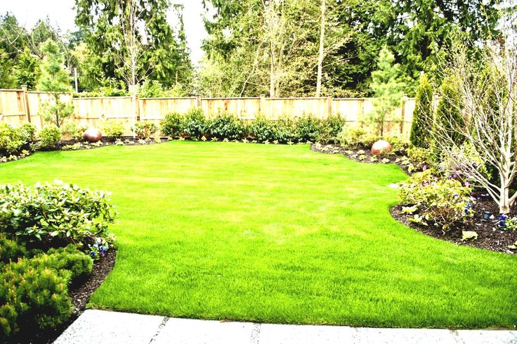 planting along privacy fence | Backyard Privacy. beautiful fence wooden brown color suitable privacy ...