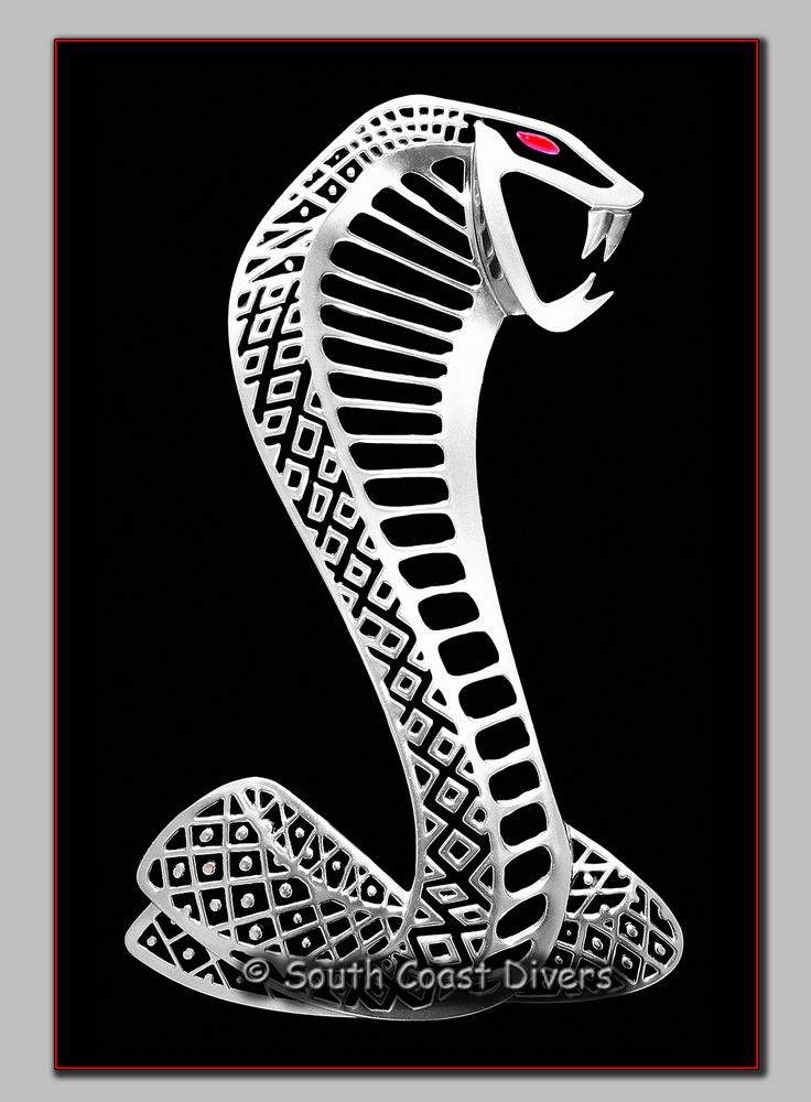 Mustang Cobra Logo Tattoo Mustang Cobra Logo Weneedfun