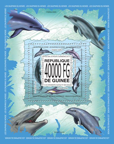 GU 13518 bDolphins, (Delphinus delphis, Lagenorhynchus albirostris, Lissodelphis borealis).