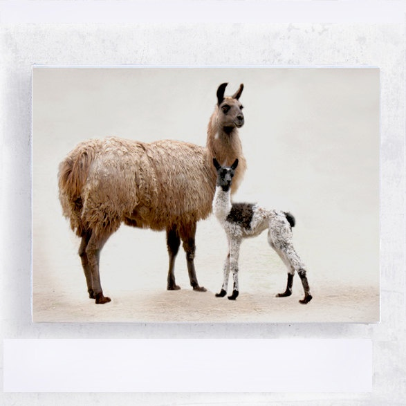 Animal Art Llama Art Nursery Art Mother And Child