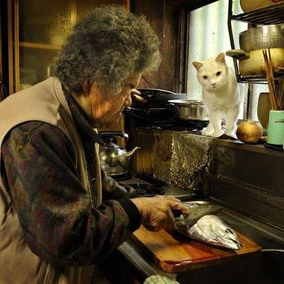 Miyoko Ihara has been taking photographs of her grandmother, Misao and her beloved cat Fukumaru since their relationship began in 2003. Their closeness has been captured through a series of lovely photographs. 12-07-12 / Miyoko Ihara