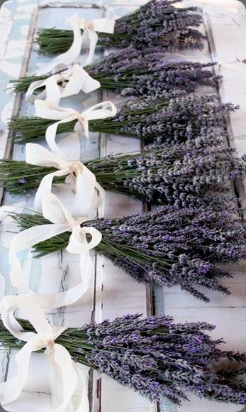 Lavender wedding ideas. (Botanical Brouhaha - http://botanicalbrouhaha.blogspot.com/2012/07/lavender.html#) @WV Weddings Magazine