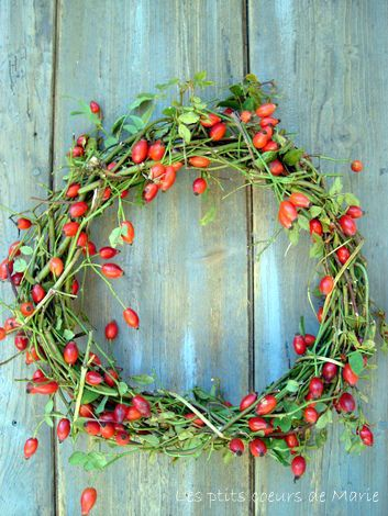 Rose Hip Wreath :: I can imagine this made with little bitty chilies.
