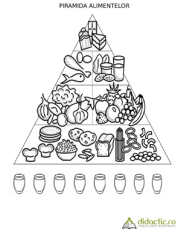 fisa-piramida alimentelor | nechiformadalina | 07.02.2017