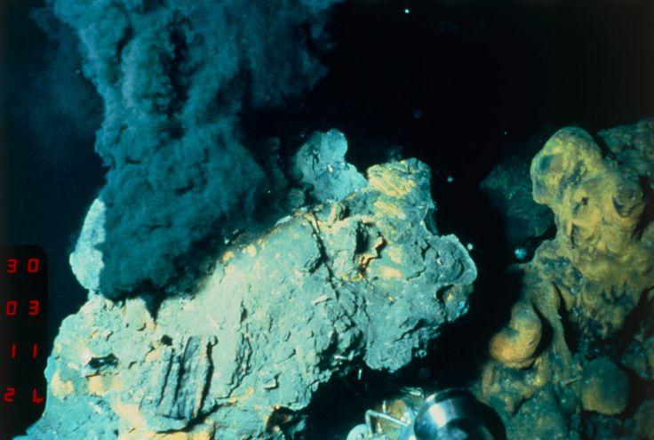 「Last Universal Common Ancestor」(最終普遍共通祖先)、略して「LUCA」は、その起源を約40億年前にまでさかのぼることのできる単細胞生物だ。  LUCAはきわめて頑強で、今日でも地球上に存在している熱水噴出孔に似た環境、つまり酸素がなく非常に高温で、鉱物の豊富な極限環境でも生存できたという。