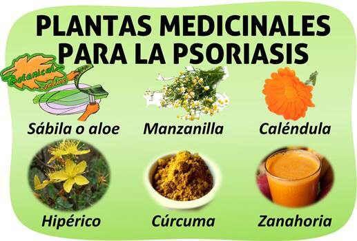 Plantas medicinales y remedios para tratamiento natural de la proriasis