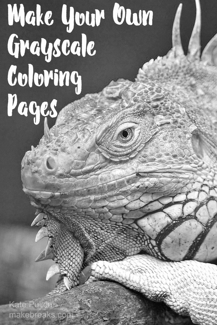 How To Make Your Own Grayscale Coloring Pages Make Breaks Grayscale Coloring Coloring Pages Grayscale