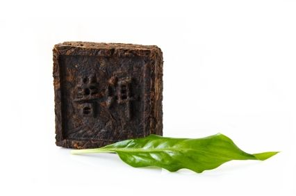 Shrink Fat Cells with Pu-erh Tea : Underground Health Reporter