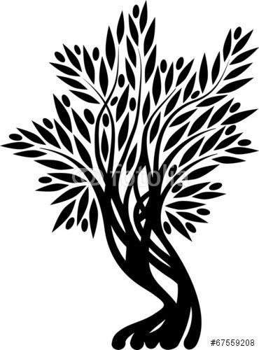 Вектор: Old olive tree
