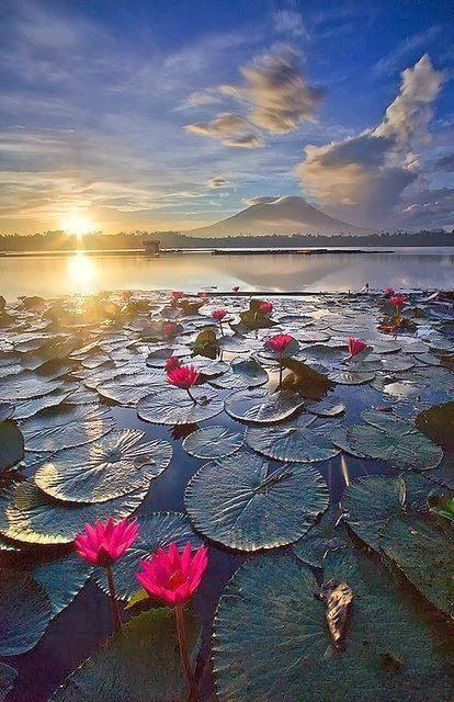 Sunrise in Sampaloc Lake Laguna Phillippines