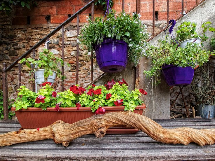 Alluring-Exterior-House-with-Good-Decor-of-Creative-Flower-Pots-for-Flora-Miserachs-again-Brown-Plastic-Pot-also-Hanging-Pots-on-the-Hand-Rail.jpg (1024×768)