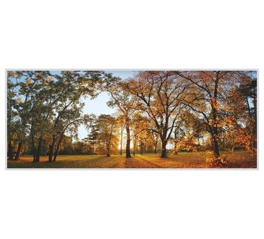 Obraz - fotografie s rámem (vel. 50/125/4,0 cm), např XXLutz