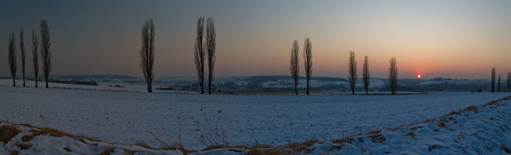 A cold and snowy sunset over Eyser Plantage  Photo © Maurice Hertog Fotografie
