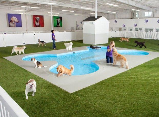 Já pensou em um terminal de aeroporto exclusivo pros animais? Essa é a proposta do The Ark, projeto do Aeroporto JFK em Nova Iorque.