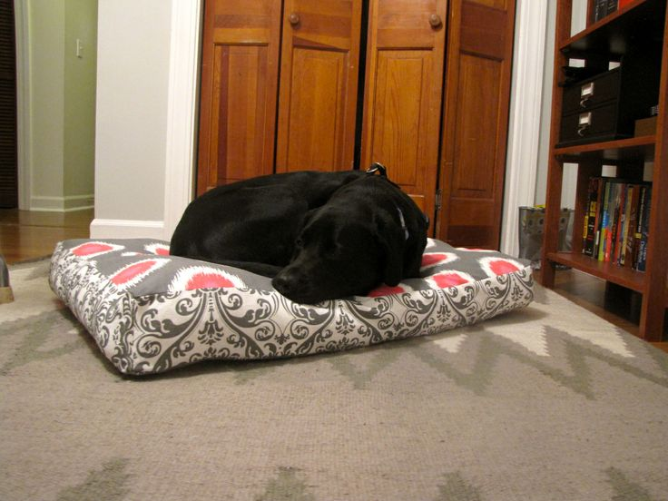 DIY dog bed stuffed with pillows instead of poly stuffing.