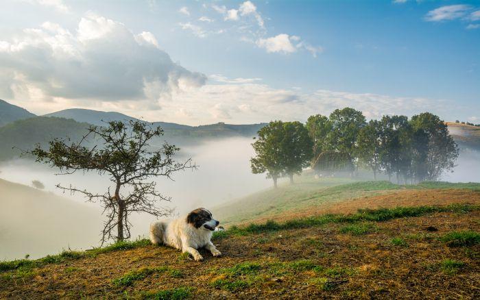 Fotografia utilizatorului Catalin Vezetiu din categoria Fotografia de peisaj a fost realizata cu Nikon D7100