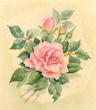 Metà Del 20 ° Secolo Acquerello - Rosa Studio