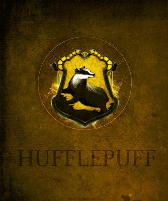 Harry Potter World: HUFFLEPUFF