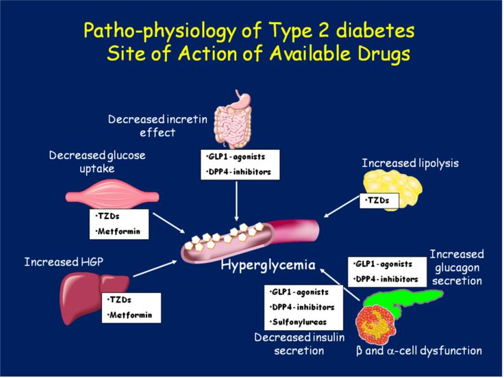 diabetes medications mechanism of action - Google Search