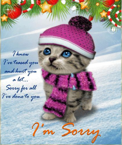 7 best Sorry images on Pinterest E cards, Ecards and Email cards - apology card messages